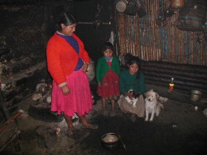 Inside hut going over Pass.  Note guinea pigs behind woman.  Woman offered us her only food...a pan of potatoes.